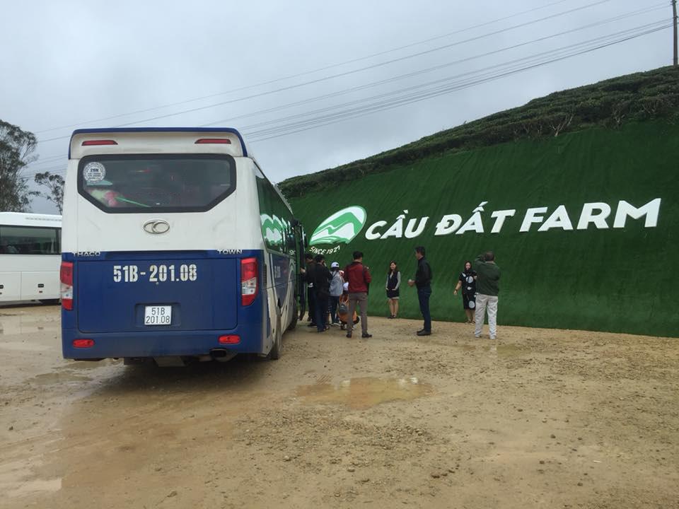 Xe Phi Loan tại đồi chè Cầu Đất Đà Lạt