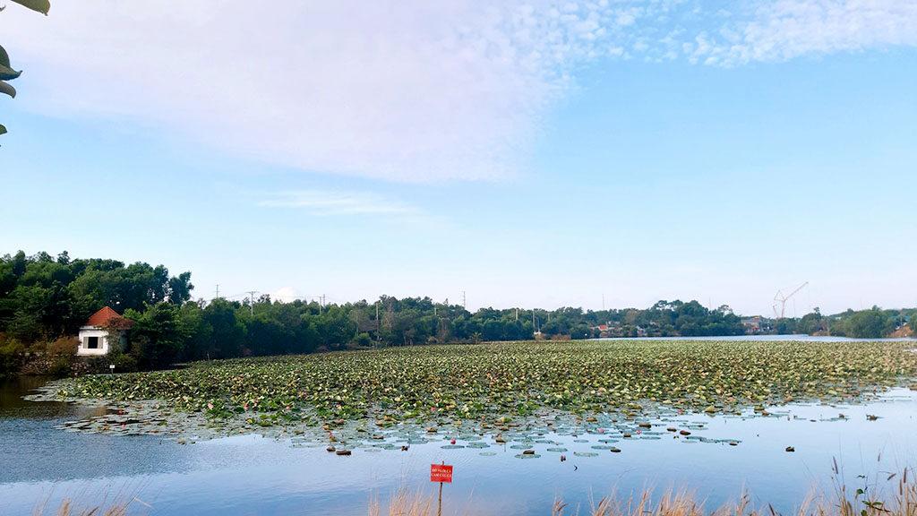 Hồ Mang Cá Long Sơn
